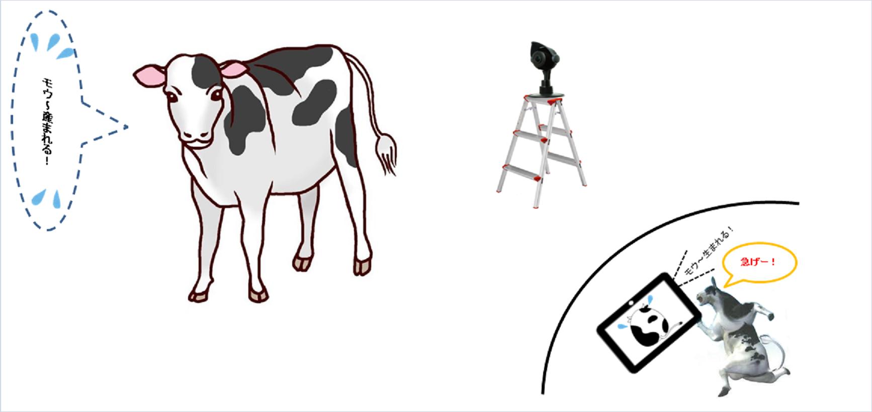 牛産まれる
